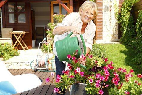 IMAGE - Lady Gardening