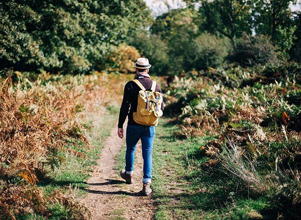IMAGE - Man walking in countryside
