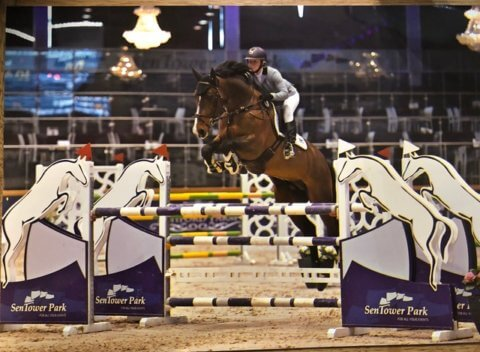 IMAGE - showjumping patient's testimonial